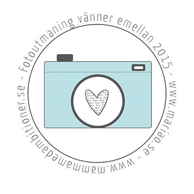 logga-Fotoutmaning-vänner-emellan-2015-blå-m--linje2-400px