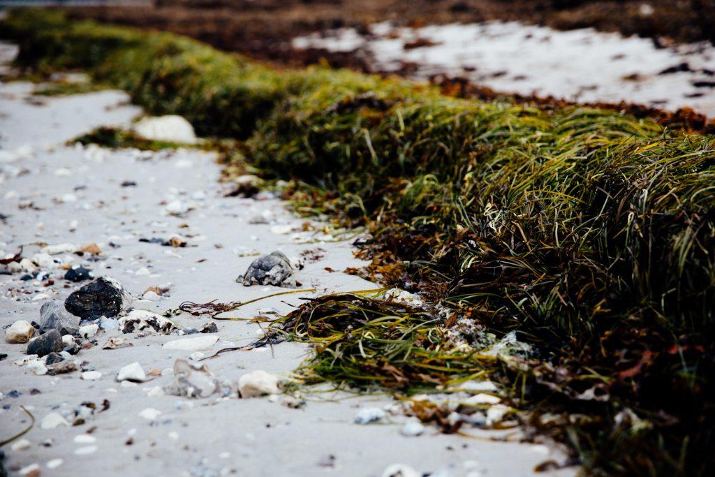 Stranden vid Ribban i Malmo